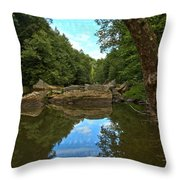 Reflections In Slippery Rock Creek Throw Pillow