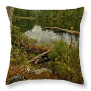 Reflections In Starvation Lake Throw Pillow