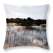 Reflections In The Everglades  Throw Pillow
