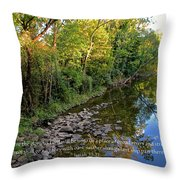 Reflections In The Stream Throw Pillow