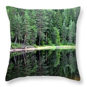 Reflections In Wtare Throw Pillow