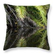 Reflections Marimbus River Brazil 2 Throw Pillow