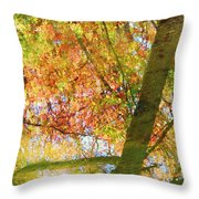Reflections Of A Colorful Fall 001 Throw Pillow