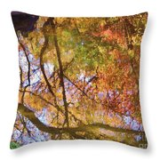 Reflections Of A Colorful Fall 002 Throw Pillow