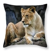 Reflections Of A Lioness Throw Pillow