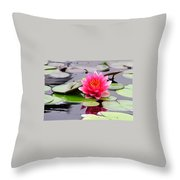 Reflections Of A Pink Waterlily  Throw Pillow