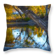 Reflections Of A Pond 2 Throw Pillow