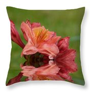 Reflections Of A Rhododendron Throw Pillow
