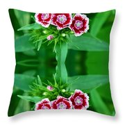 Reflections Of A Summer Bouquet Throw Pillow by Aimee L Maher Photography and Art Visit ALMGallerydotcom