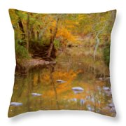 Reflections Of An Autumn Day Throw Pillow
