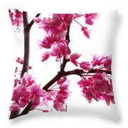 Reflections Of Beauty 2 Throw Pillow