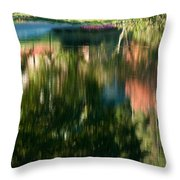 Reflections Of Colours  Throw Pillow