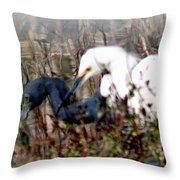 Reflections Of Different Colors - Living In Harmony Throw Pillow