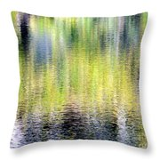 Reflections Of Fall 3 Throw Pillow