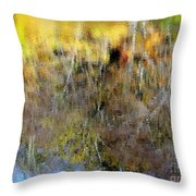 Reflections Of Fall1 Throw Pillow