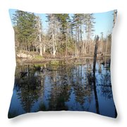 Reflections Of Maine Throw Pillow