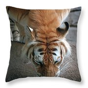 Reflections Of The Wild Throw Pillow