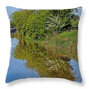 Reflections Of Trees Throw Pillow