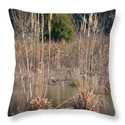 Reflections Of Winter Past 2014 Throw Pillow