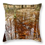 Reflections On A Forest Floor Throw Pillow