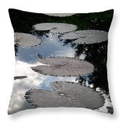 Reflections On A Lily Pond Monet Throw Pillow