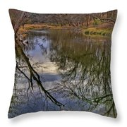 Reflections On A Warm Winter Day Throw Pillow