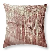 Reflections On Lake Trafford Throw Pillow