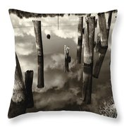 Reflections On The Bayou Villere La  Dsc05423 Throw Pillow