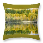 Reflections On The Columbia Throw Pillow