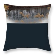 Reflections From Minnesota Throw Pillow
