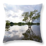 Reflective Flood Waters Throw Pillow