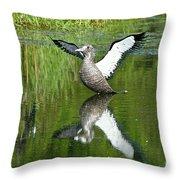 Reflective Loon Throw Pillow