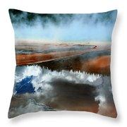 Reflective Springs Throw Pillow