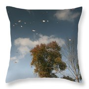 Reflective Thoughts  Throw Pillow