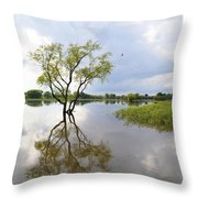Reflective Times Throw Pillow