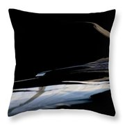 Reflective Wing-let  Throw Pillow