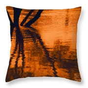 Reflectivity Throw Pillow