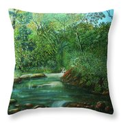 Reflejo Sereno Throw Pillow
