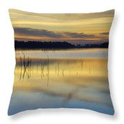 Reflexions Throw Pillow