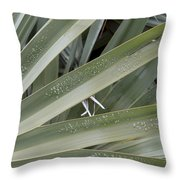 Refreshed By Rain Throw Pillow