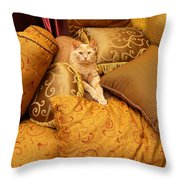 Regal Feline Throw Pillow by Amy Cicconi