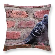 Regards Throw Pillow