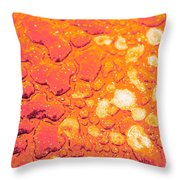 Regosol Throw Pillow