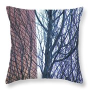 Regular Irregularity  Throw Pillow