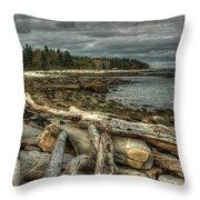 Reid Beach Throw Pillow
