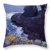 Reiff Sea Stack Throw Pillow