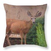 Reindeer In The Garden Throw Pillow