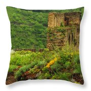 Reinfels Castle Ruins And Wildflowers In The Rhine River Valley 1 Throw Pillow