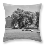Reive Blvd Barn 15059b Throw Pillow