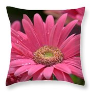 Rejoice It's Spring Throw Pillow